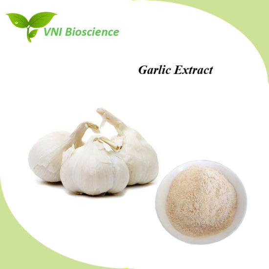 ISO Certified Pure Natural Garlic Extract for Improve Immunity