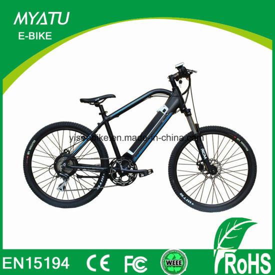 Mountain Motor Battery Electric Bike with Lishui Controller