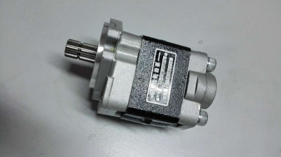 Cheap Price High Pressure Hydraulic Gear Rotary Oil Pump pictures & photos