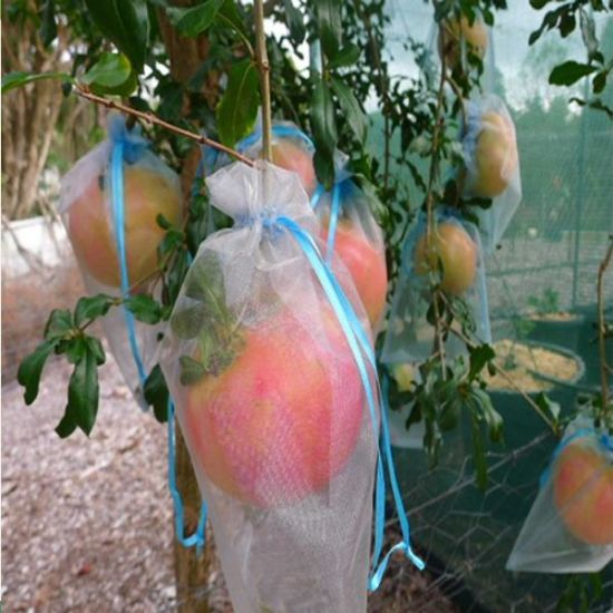 17-40GSM UV Resistant Nonwoven Tree Protection Cover