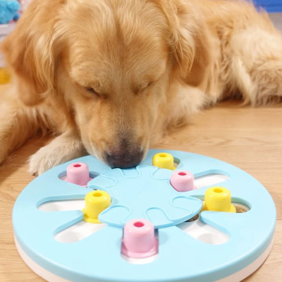 Plastic Educational Treat Dispensing Pet Smart Puzzle Toy Interactive Pet Toy for Dog