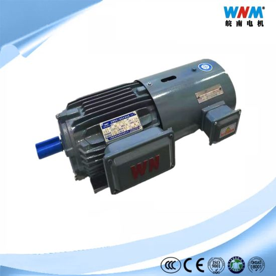 Wnm Factory Electric Products of Three Phase AC Induction Inverter Variable Frequency Drive Motors for Different Industry Applications