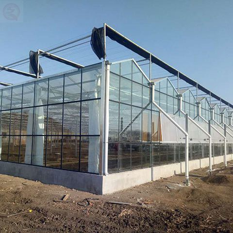 Shengqiang Hot Galvanized Steel Frame Agriculture Multi-Span Serre Glass Greenhouse for Vegetables Flowers Tomatoes Farm Garden