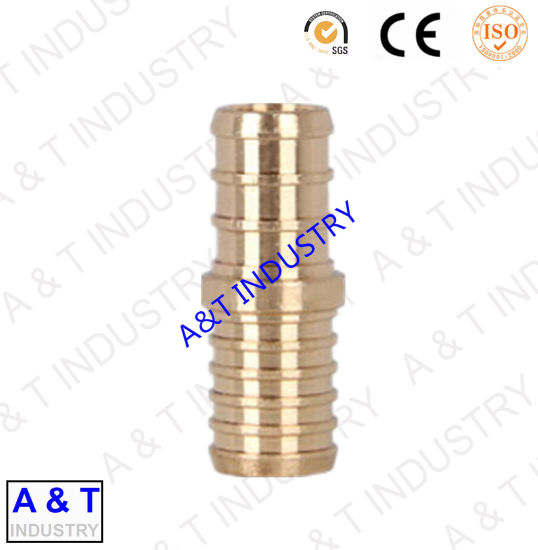 Hot Sale Brass Male Connector Pipe Fitting with High Quality