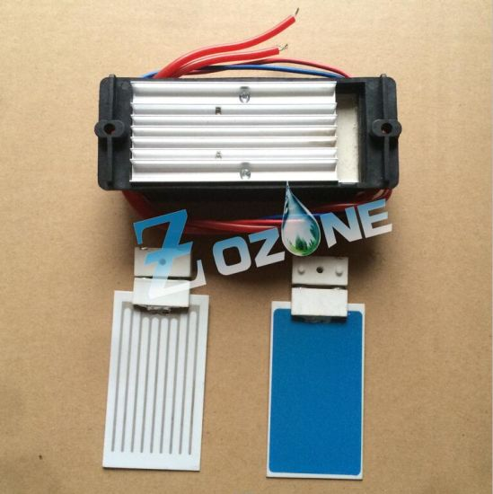 110V 7g Ozone Generator Used with Ceramic Ozone Plate pictures & photos