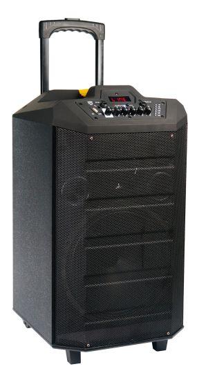 Professional Audio PA Karaoke Trolley Bluetooth Wooden Speaker