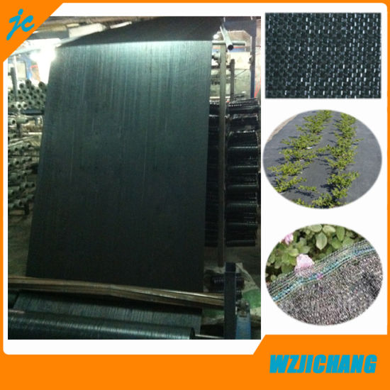 PP Woven Weed Control Mat/Fabric/Ground Cover/Landscape Fabric/Cloth/Sack pictures & photos