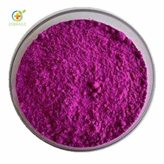 Organic Blueberry Extract 25% Anthocyanin Powder