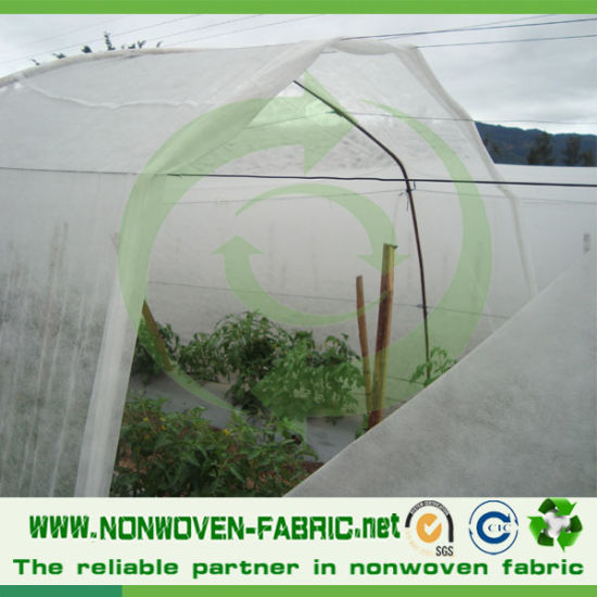 PP Nonwoven Fabric with Anti-UV Protector for Agriculture Cover pictures & photos