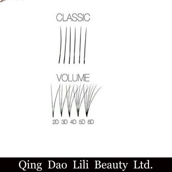 Manufacturer Wholesale Best Seller Private Label 2D 3D 4D 5D 6D 7D 8d 9d  10d Bulk Volume Fan Lashes