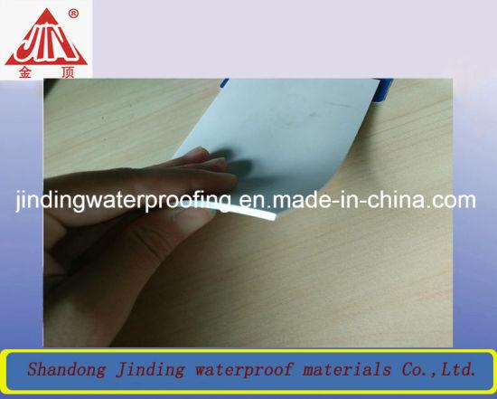 Tpo Sheet Membrane Waterproofing For Bat Underground