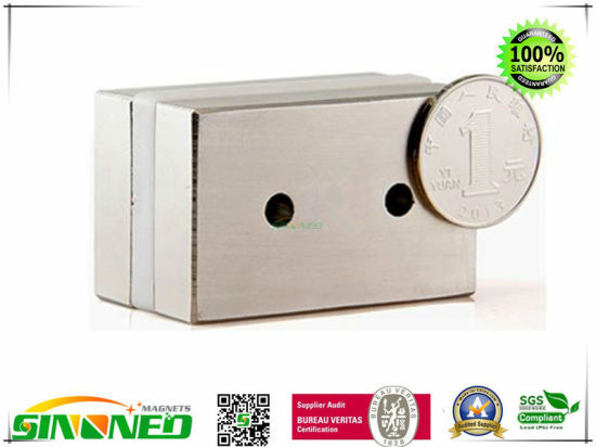 Rare Earth Neodymium (NdFeB) Magnets pictures & photos
