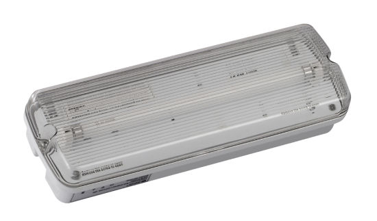Emergency Lighting Factory Manufacture Emergency Light with T5 8W Fluorescent