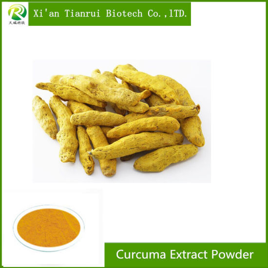 100% Pure Curcuma Extract Root Powder Curcumin 95% pictures & photos
