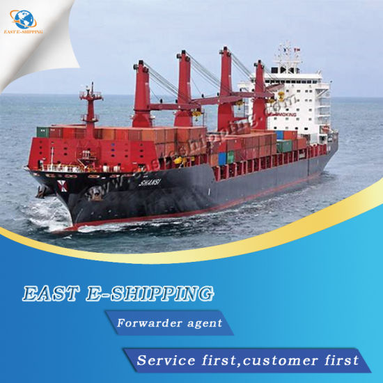 Import and Export Shipping Agent From China to The World pictures & photos
