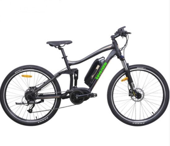Full Suspension Electric Bike with 36V 350 Bafang Center Motor Lithium Battery