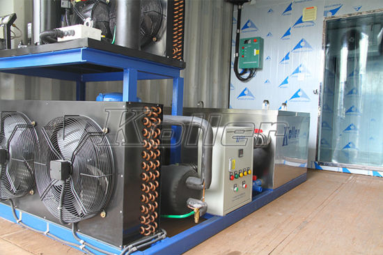 2 Tons CE Approved Containerized Ice Block Machine with Strong Block Ice pictures & photos