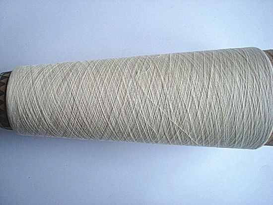 100% Bamboo Compact Yarn for Woven Use Ne60/1 pictures & photos