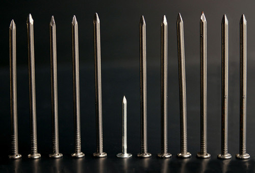 Professional Manufacturer of Common Iron Nail Stainless Steel Nail