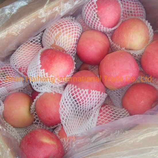 Red Color FUJI and Red Star Fresh China Apple pictures & photos