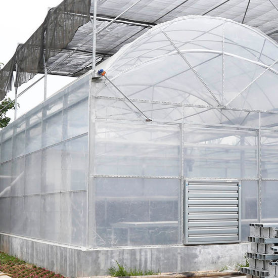 Factory Price Multi-Span Plastic Film Agricultural Economical Greenhouse with Hydroponics System for Tomato/ Cucumber/ Lettuce/ Pepper