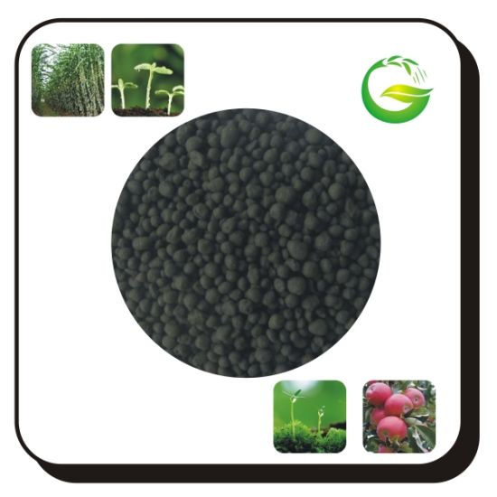 Natural Organic Fertilizer Humic Acid Granular pictures & photos