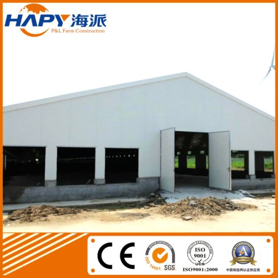 Low Cost Steel Poultry Shed with Modern Design From Qingdao Super Herdsman pictures & photos