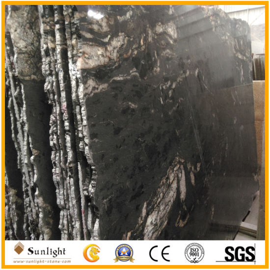 China Polished Cosmic Black Granite Paving Slabs For Pavers