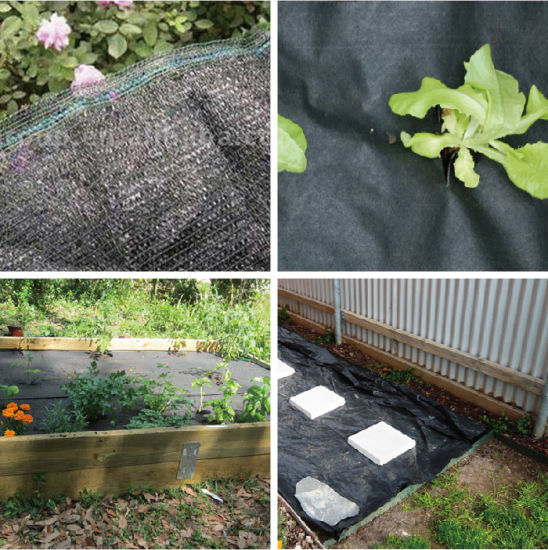 China Pp Woven Weed Control Mat Fabric Ground Cover Landscape Fabric