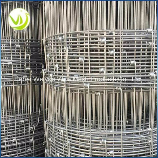 China Galvanized Cattle Field Fence Wire Mesh Fence for Grassland ...