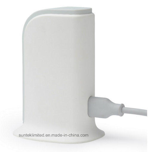 Micro USB 5 Pin Universal USB Wall Charger pictures & photos