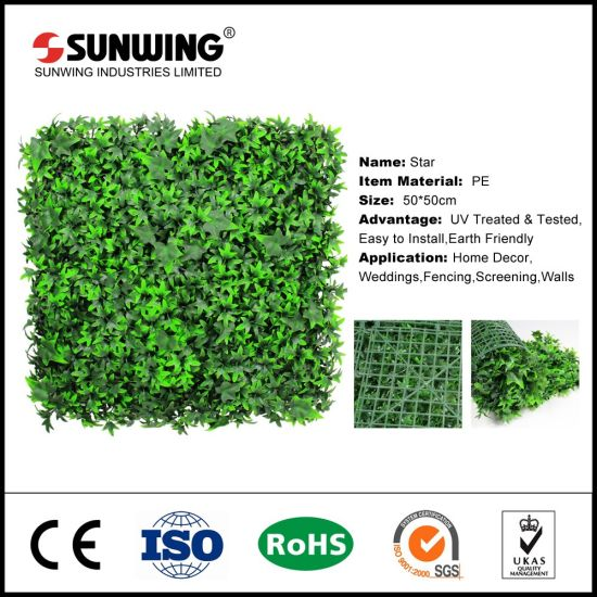 china supplier beautiful succulent artificial plants for wall decor