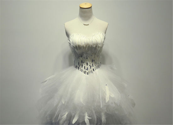 Beading Feather Strapless Tulle Short Mini Prom Dress (prom-93002) pictures & photos