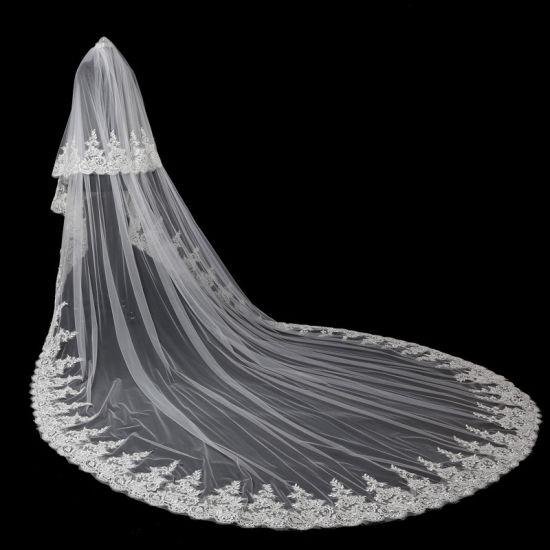 2019 Bridal Wedding Accessories Veils Ts5518