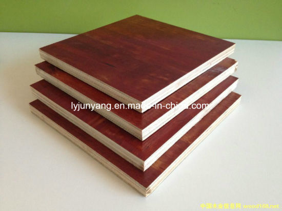 Commercial Plywood Birch Pine Okoume Marine Grade Packing Plywood Competitive Prices