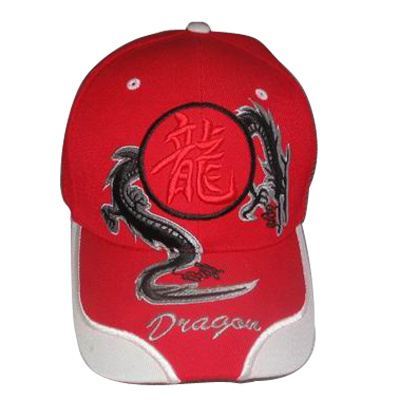 Custom Cap with Nice Dragon Logo Bb241 pictures & photos