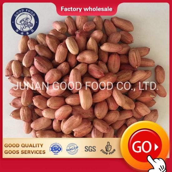 Premium Bold Peanuts / Blanched Peanuts Java Peanuts