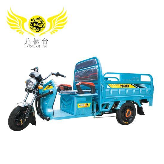 Heavy Loading E Loader 3 Wheel Electric Cargo Trike