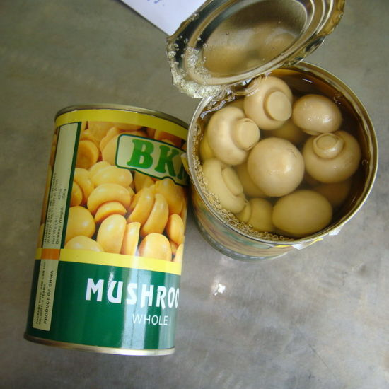 China Canned Fresh Whole Mushroom in 425g Eol