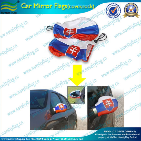Promotional Custom Car Side Mirror Cover (M-NF11F14002) pictures & photos
