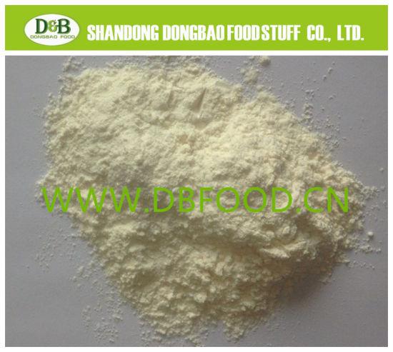Dried and Powder Garlic 100% Natural Product