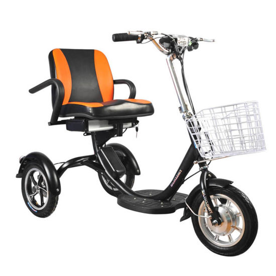 Triciclo Electrico De Pasagero Standing Three Wheeled Electric Bike for Adults