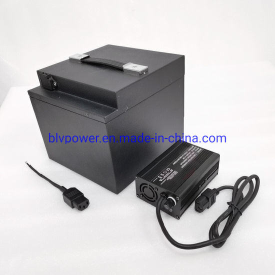 60V 20ah 1500W E Scooter/Scooter/Tricycle/Motorcycle Battery with BMS Fast Charger