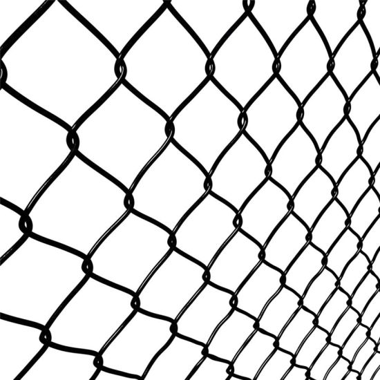 Galvanized/PVC Coated Wire Mesh Chain Link Fence