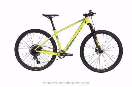 """27.5"""" Carbon MTB 12 Speed Al+Mg Air Suspension Fork Bike OEM"""