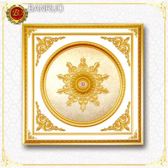 Banruo Artistic Ceiling Light for Home Decoration pictures & photos