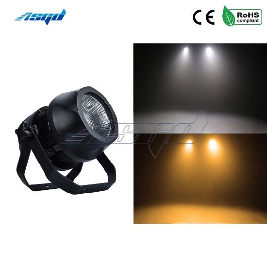Outdoor Show LED 200W COB PAR Warm White&Cool White Waterproof IP65 Stage Light DJ Disco Christmas Wedding Perform Pool Floor pictures & photos