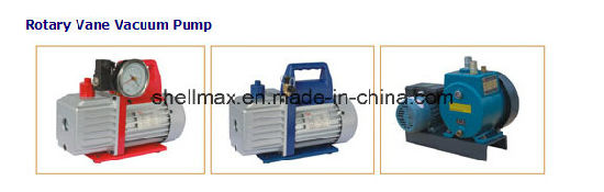 Rotary Vane Vacuum Pump pictures & photos