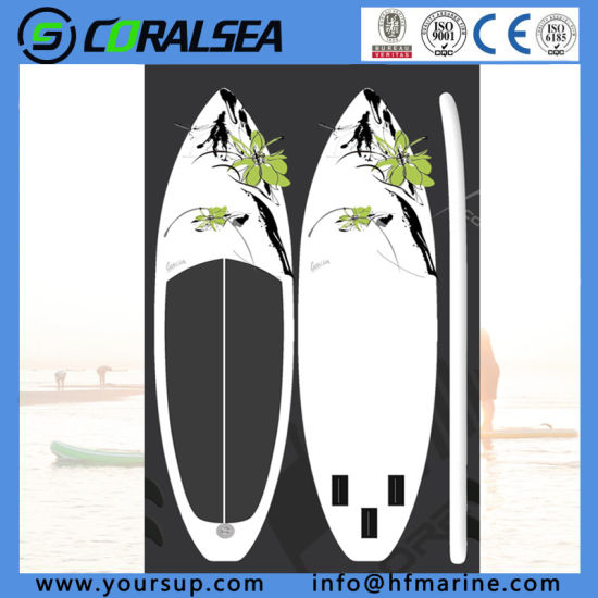 China Speed Electric Surfboard (classic 10′0