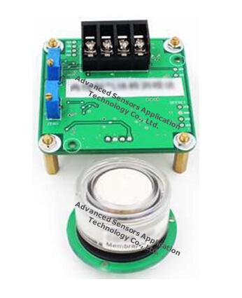 China Electrochemical Carbon Monoxide Co Gas Sensor 200